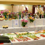 Bridgwater Flower Show